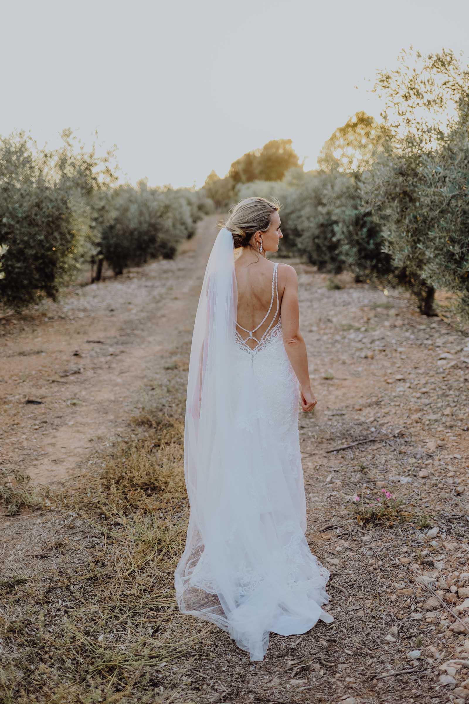 Braut steht in einer Olivenbaumplantage