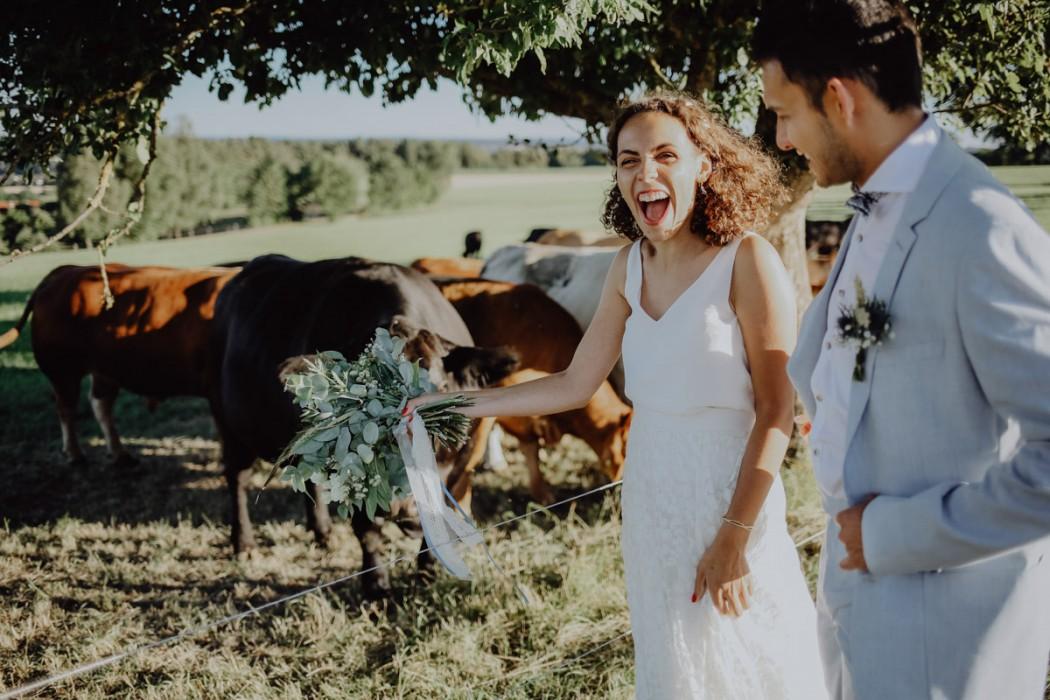 Brautpaar vor Kühen
